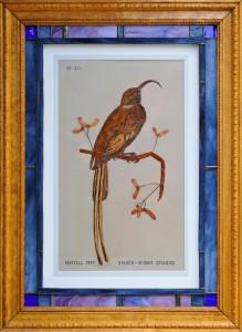 Martell Songbird