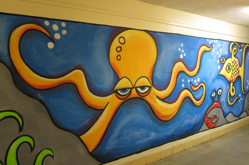 Henry QACC Octopus