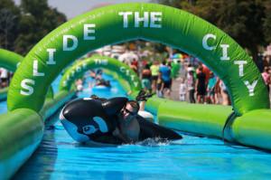 Slide Orca