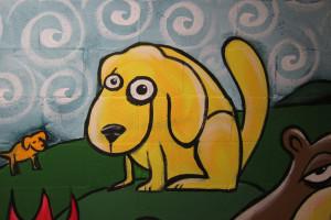 Henry QACC dog