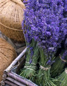 lavendar interbay